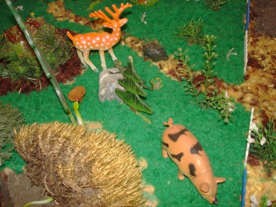знакомство с животными родного края