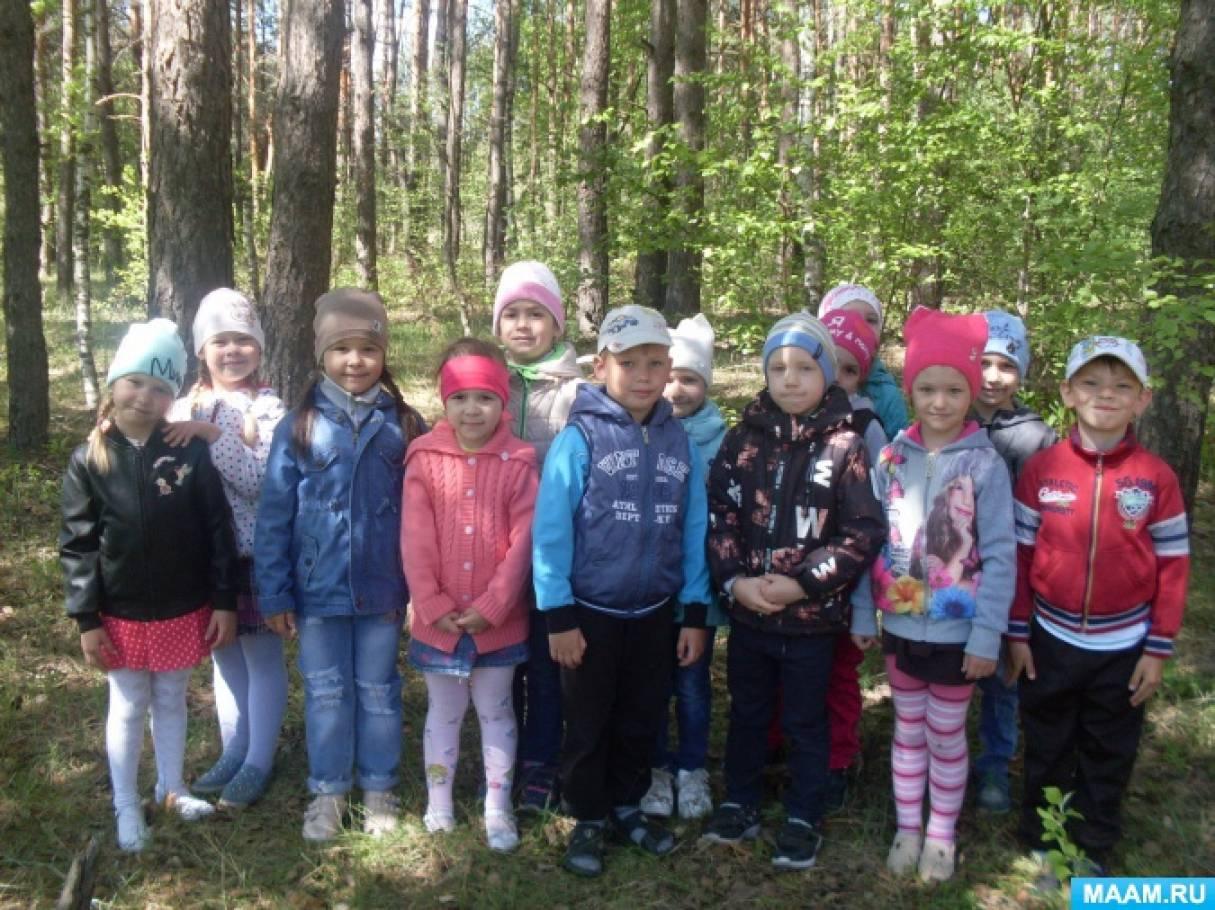 Экскурсия для детей старшего дошкольного возраста «Весенний лес»