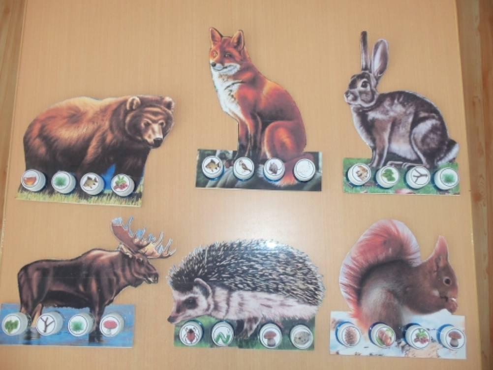 Познавательно — исследовательская деятельность в форме дидактической игры «Накормим диких животных» ФГОС
