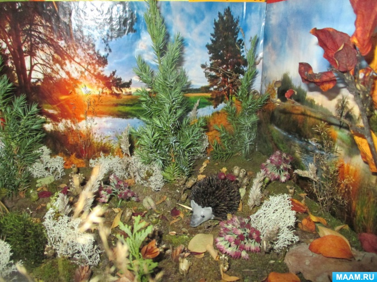 Фотоотчет о поделках из природных материалов. «Осенние фантазии»