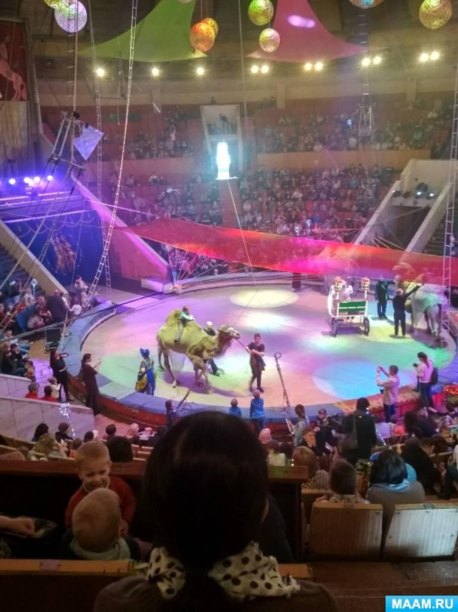 Консультация для родителей «Первый раз в цирк»