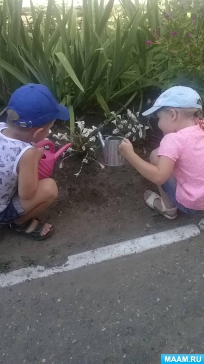 Проект летне-оздоровительной работы в средней группе компенсирующей направленности для детей с ОНР «Цветы для красоты»