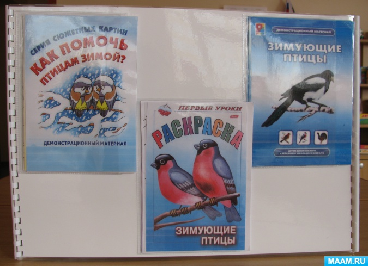 лэпбук зимующие птицы картинки с названиями музыку