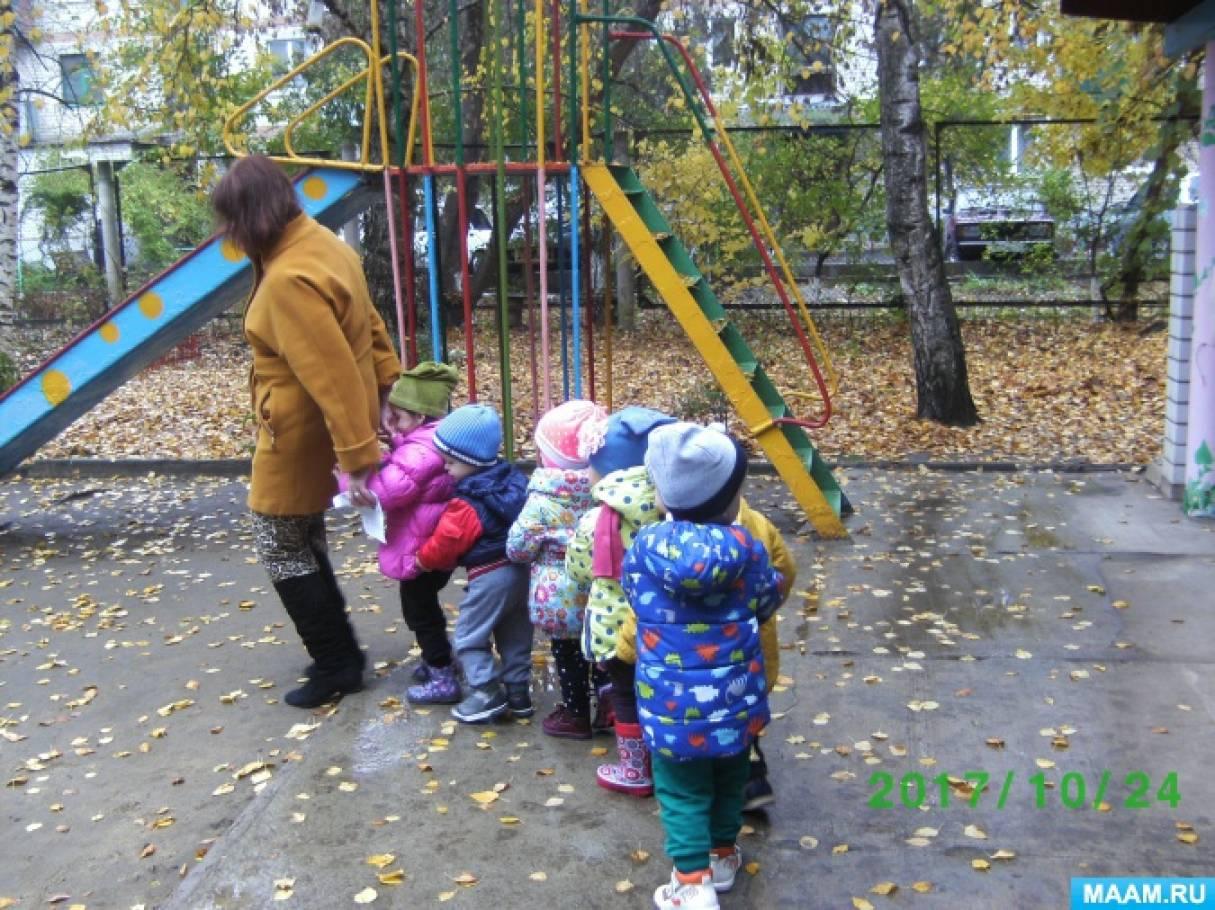 Фотоотчет о прогулке во второй группе раннего возраста «Наблюдение за березой осенью»