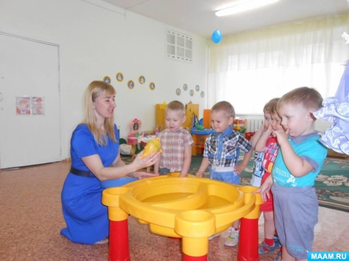 Игровая деятельность с элементами экспериментирования «Мыльные пузыри» (для детей 2–3 лет)