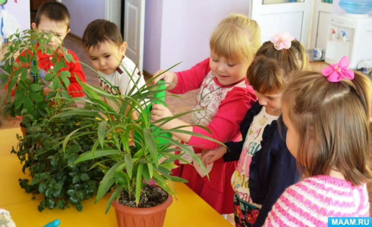 Конспект занятия по экологии и рисованию «Зеленая служба Айболита. Весенний уход за комнатными растениями» (средняя группа)