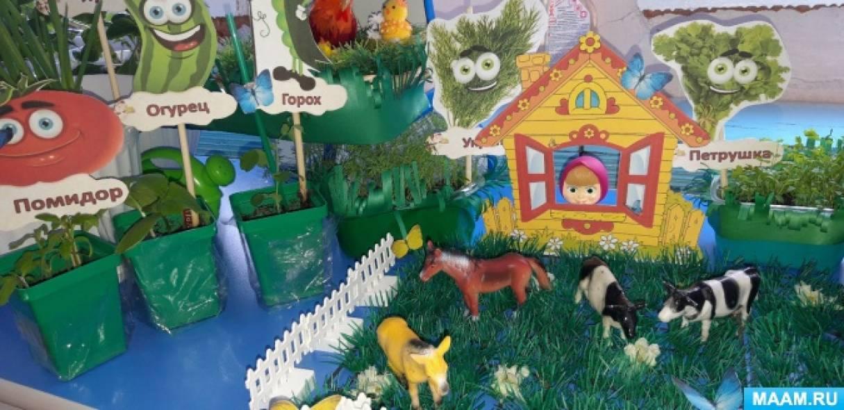 Проект «Огород на окне» для дошкольников средней группы