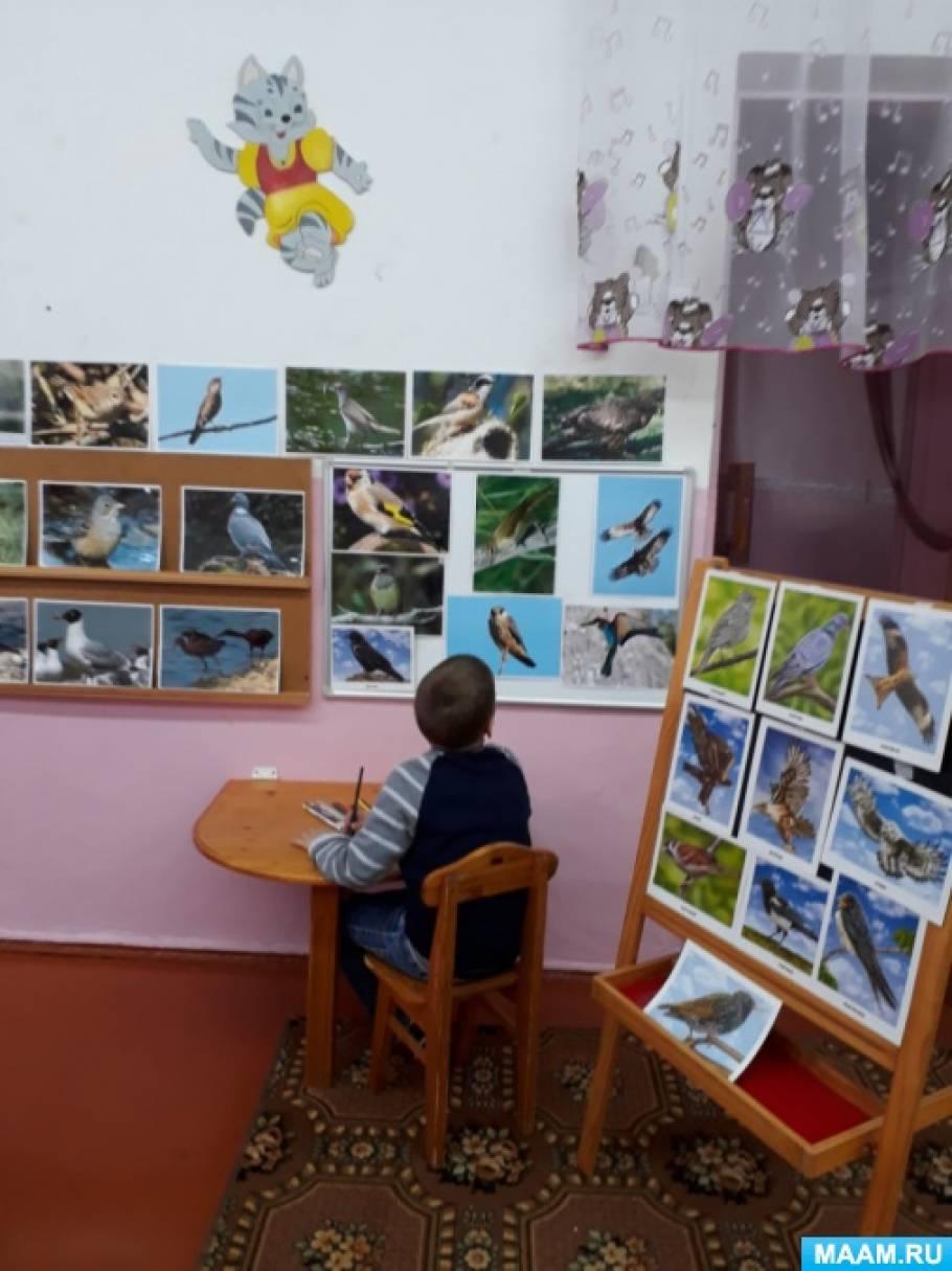 Интегрированное занятие «Птицы нашего края»