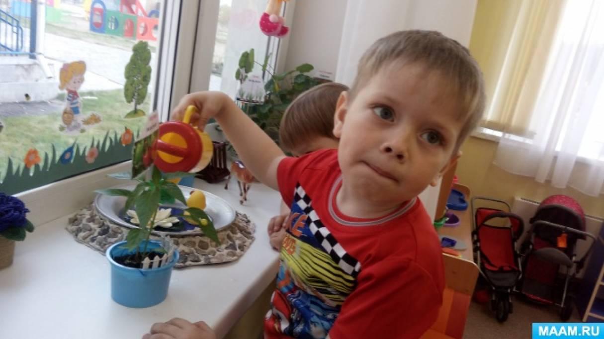 Фотоотчет «Сад и огород на подоконнике» в младшей группе