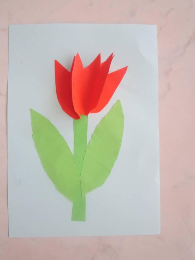 «Тюльпан» (из бумаги) вторая младшая группа