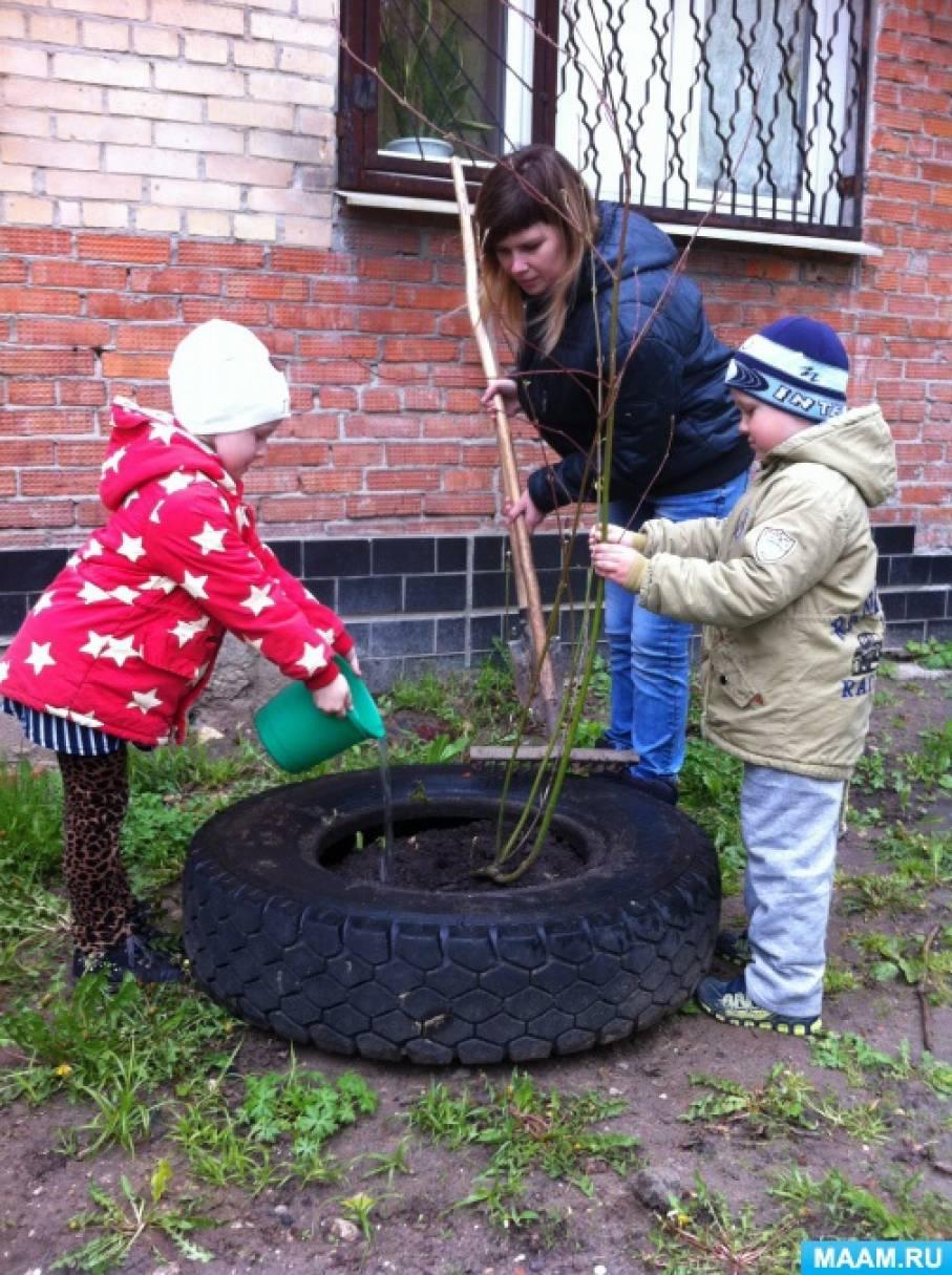 Проект «Посади дерево— помоги планете»