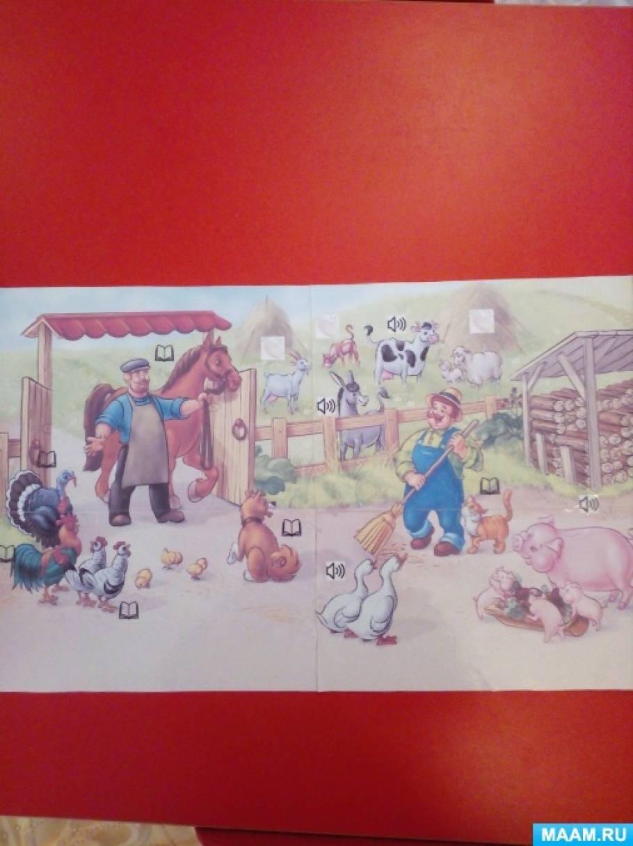 Дидактическая игра по развитию речи «Прогулка по ферме»