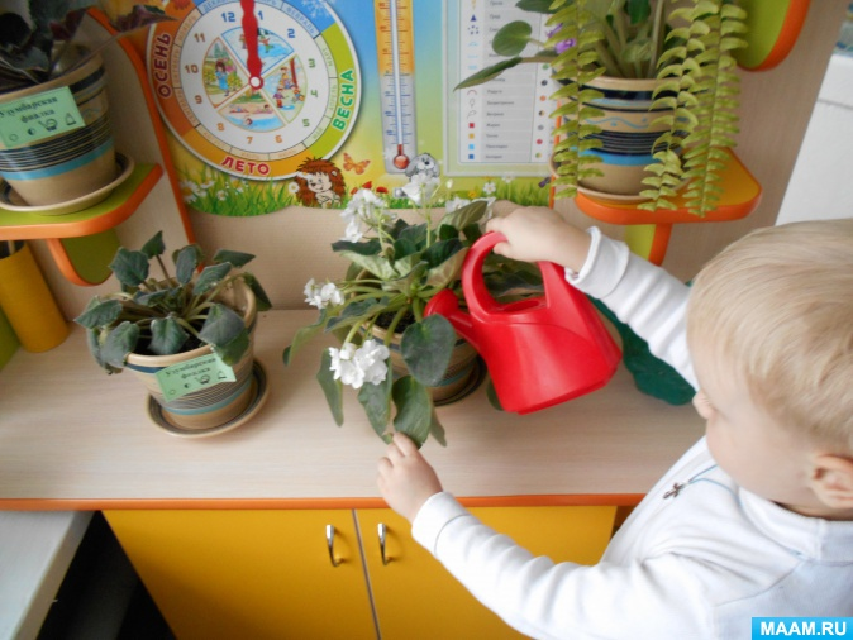 Конспект занятия «Комнатные растения— спутники нашей жизни»