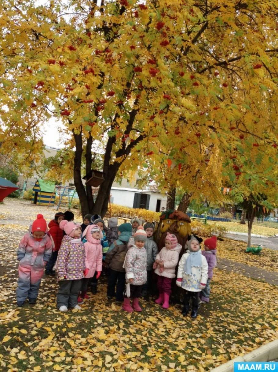 Фотоотчет «Осенние открытия с малышами второй младшей группы»