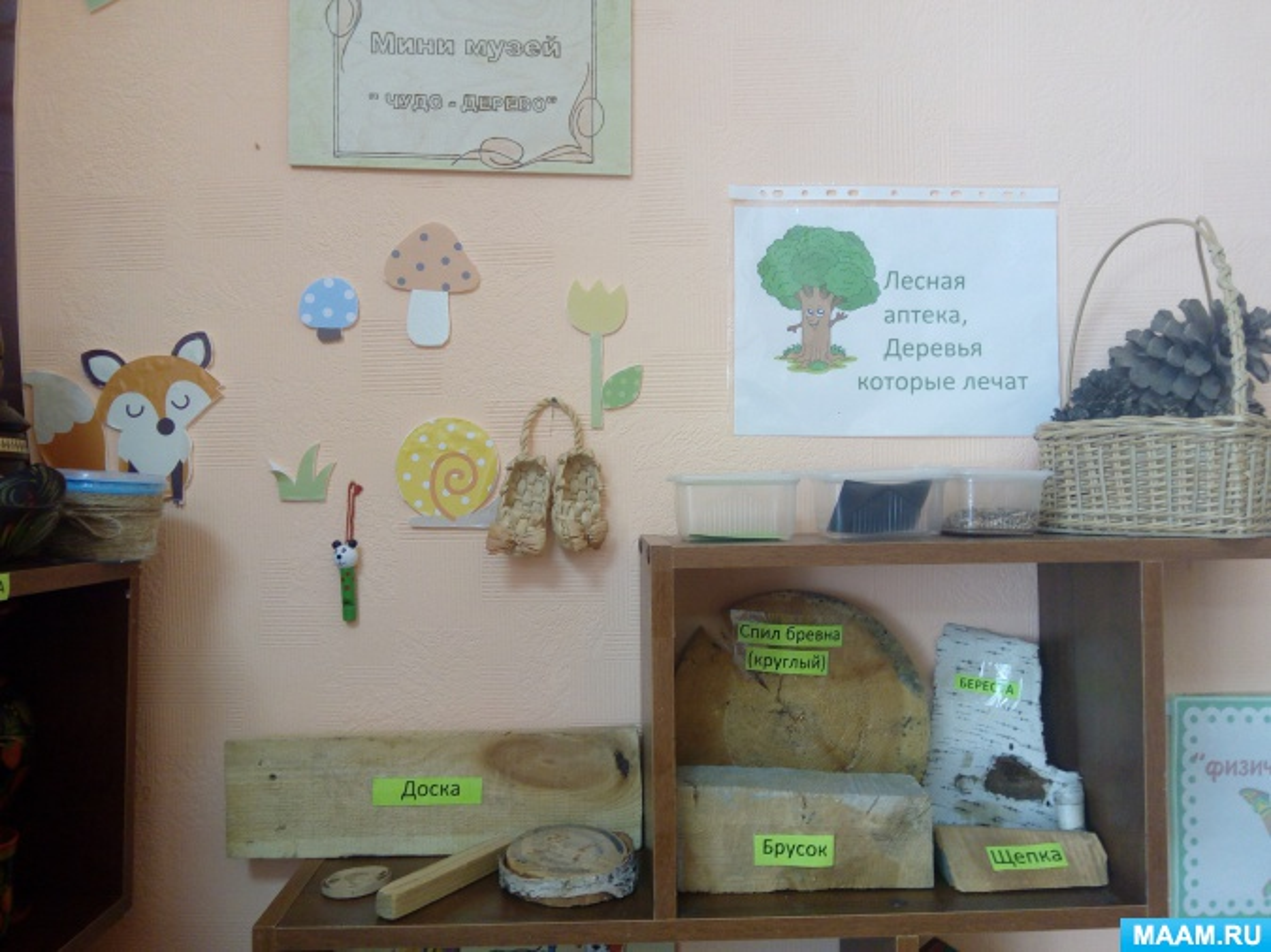 Мини-музей «Чудо-дерево»