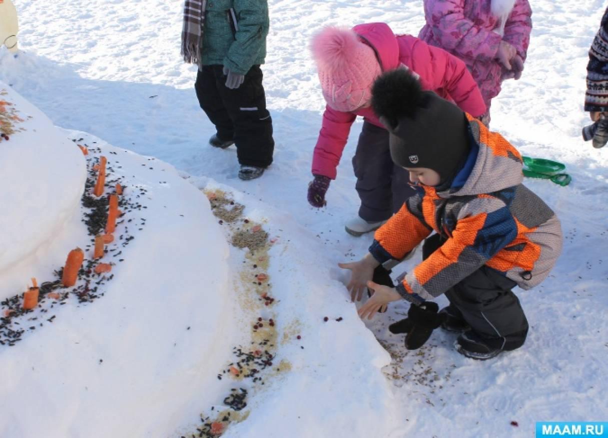 Фотоотчет о проекте «Торт-кормушка для зимующих птиц»