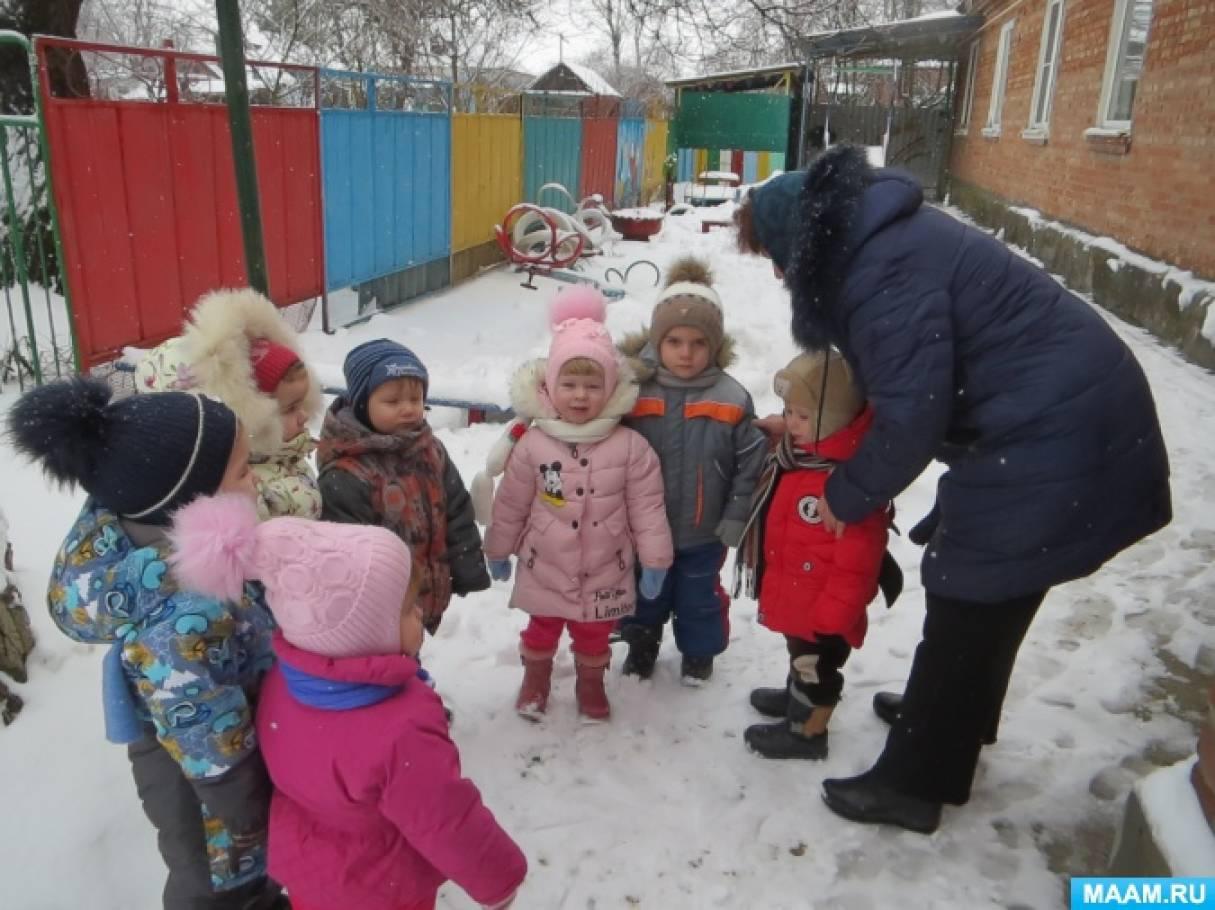 Пришла зима конспект занятия по ознакомлению с природой во второй младшей