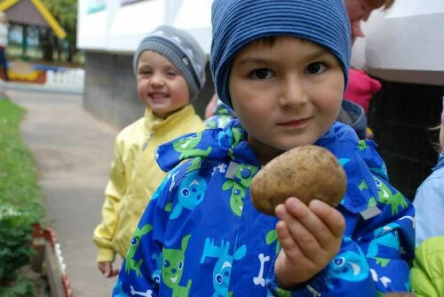 Праздники октября в детском саду