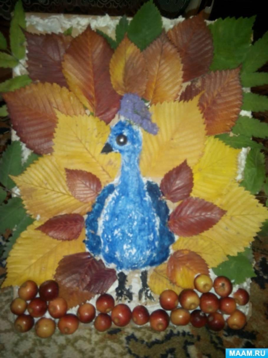 Мастер-класс «Осенний павлин»