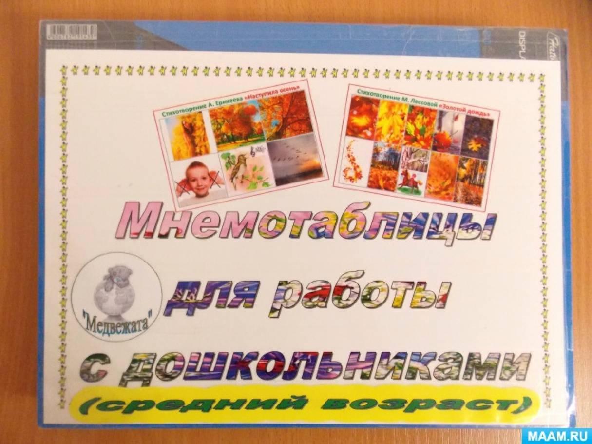 Иллюстрированный альбом «Мнемотаблицы для работы над стихами разных времён года» (средняя группа)