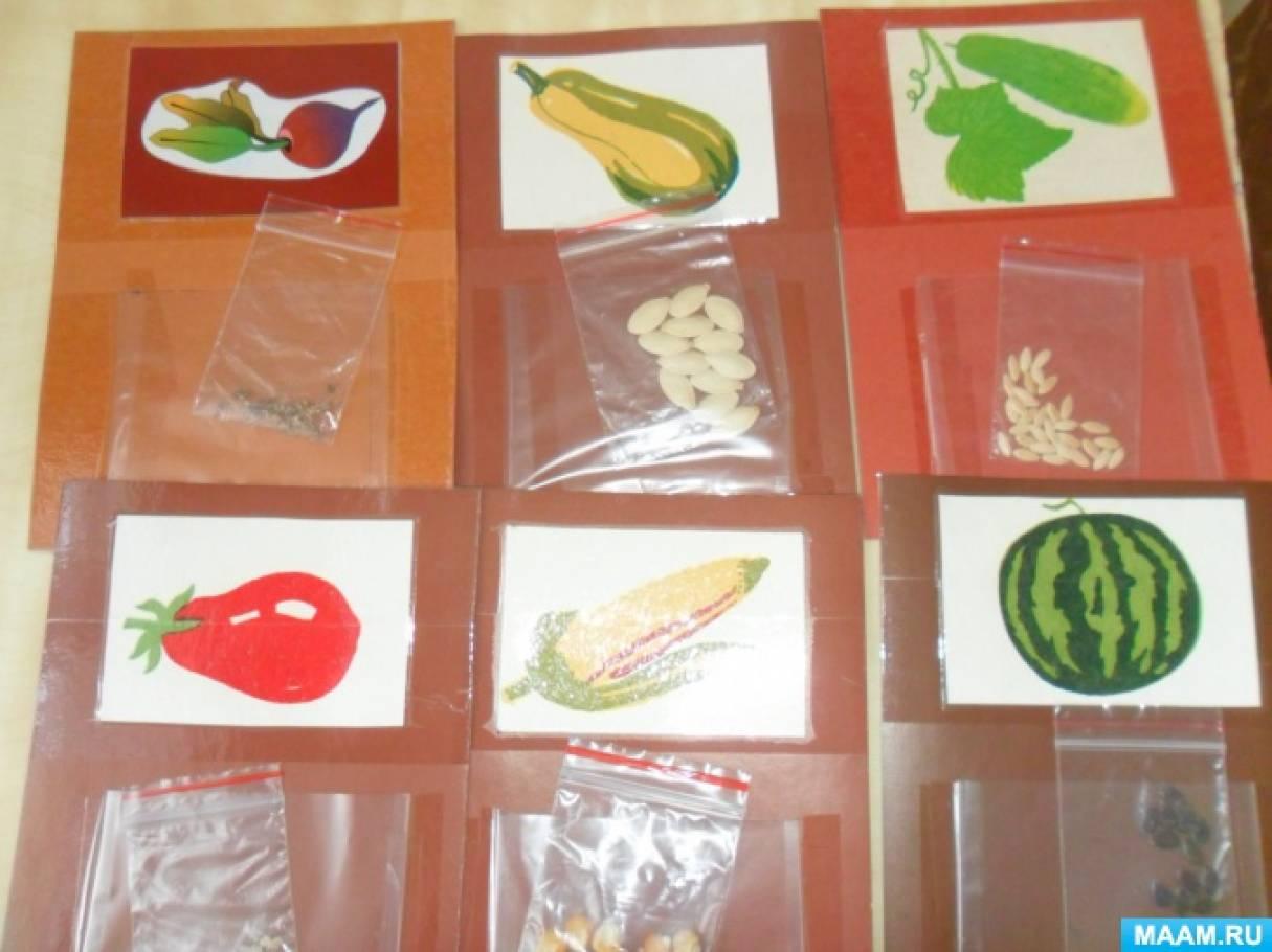 нашей картинки к игре семян всех