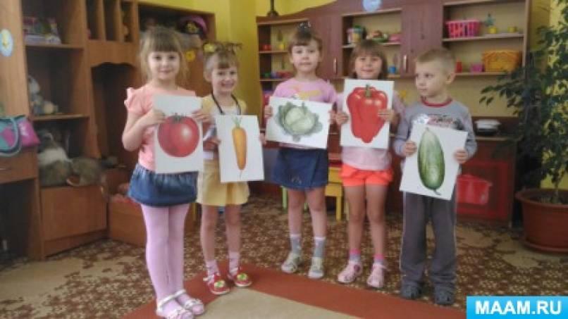 Фотоотчет об организации здорового питания в ДОУ