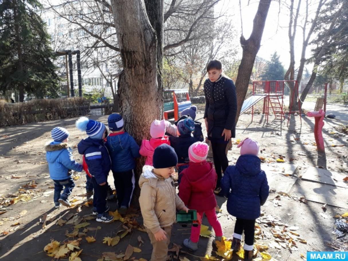 Путешествие-прогулка для детей второй младшей группы «Здравствуй, осень!»