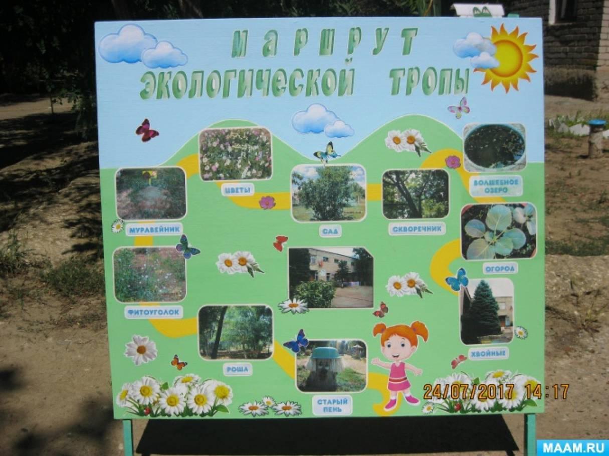 Фотоотчет «Экологическая тропа» в детском саду