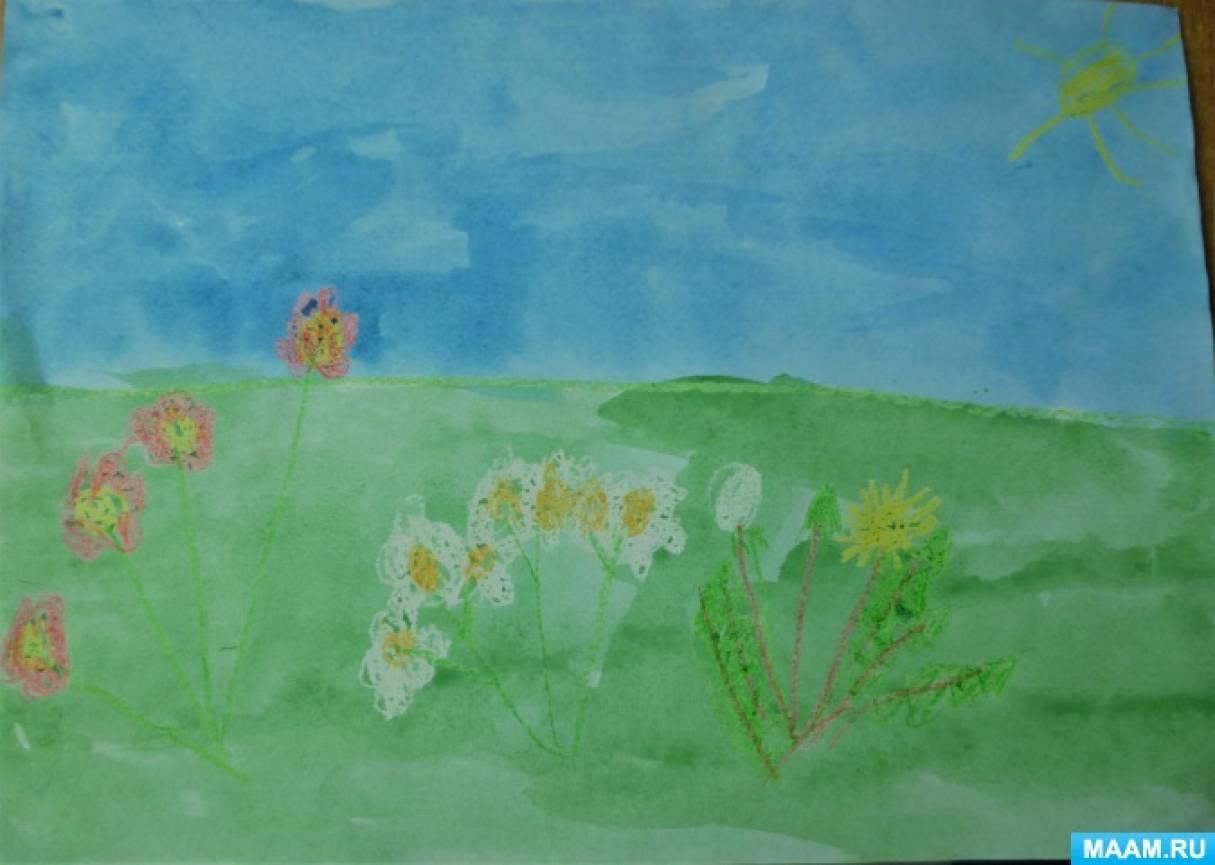 Конспект ООД по экологическому воспитанию «Луговые цветы»