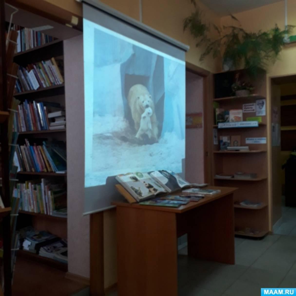 Фотоотчет. Посещение библиотеки. Знакомство с белыми медведями