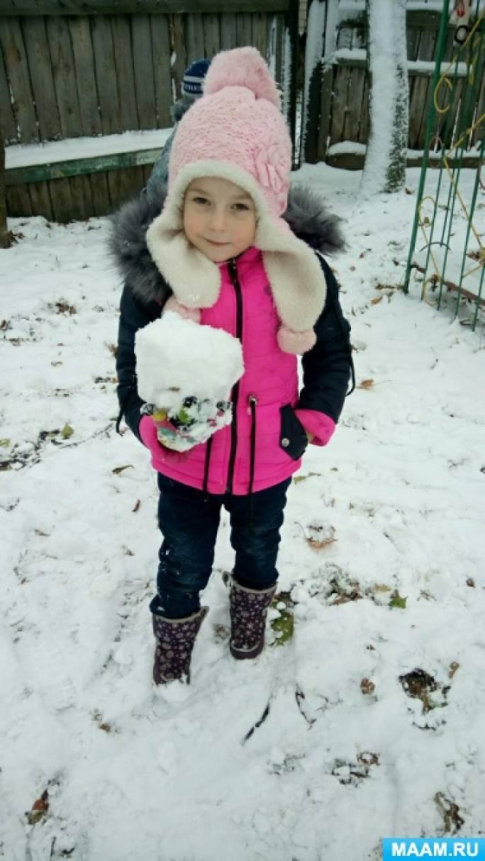 Фотоотчет о зимней прогулке «Первый снег»