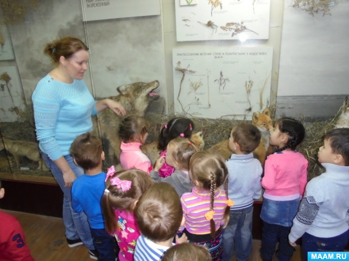 Фотоотчет «В краеведческом музее: новые открытия»