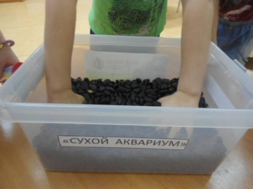 Дидактическая игра «Сухой аквариум»