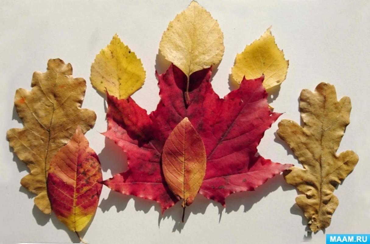 Занятие по изобразительной деятельности с использованием листьев с детьми подготовительной группы «Терем царевны Осени»