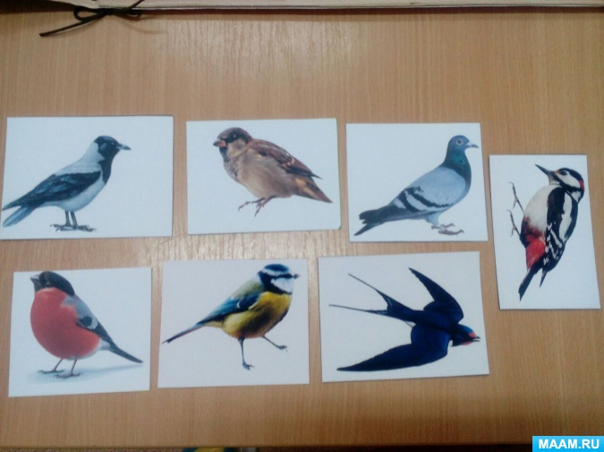 Перелетные птицы картинки для аппликации сам