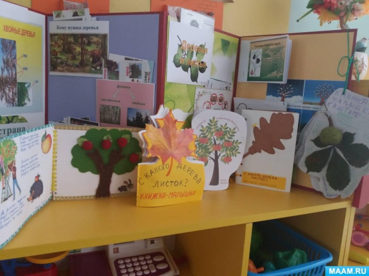 Книжка-малышка своими руками «Моё любимое дерево»