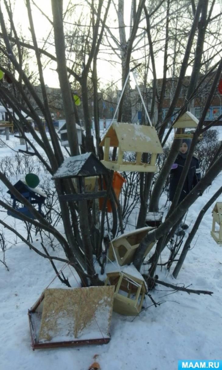 Фотоотчет «Покормите птиц зимой»