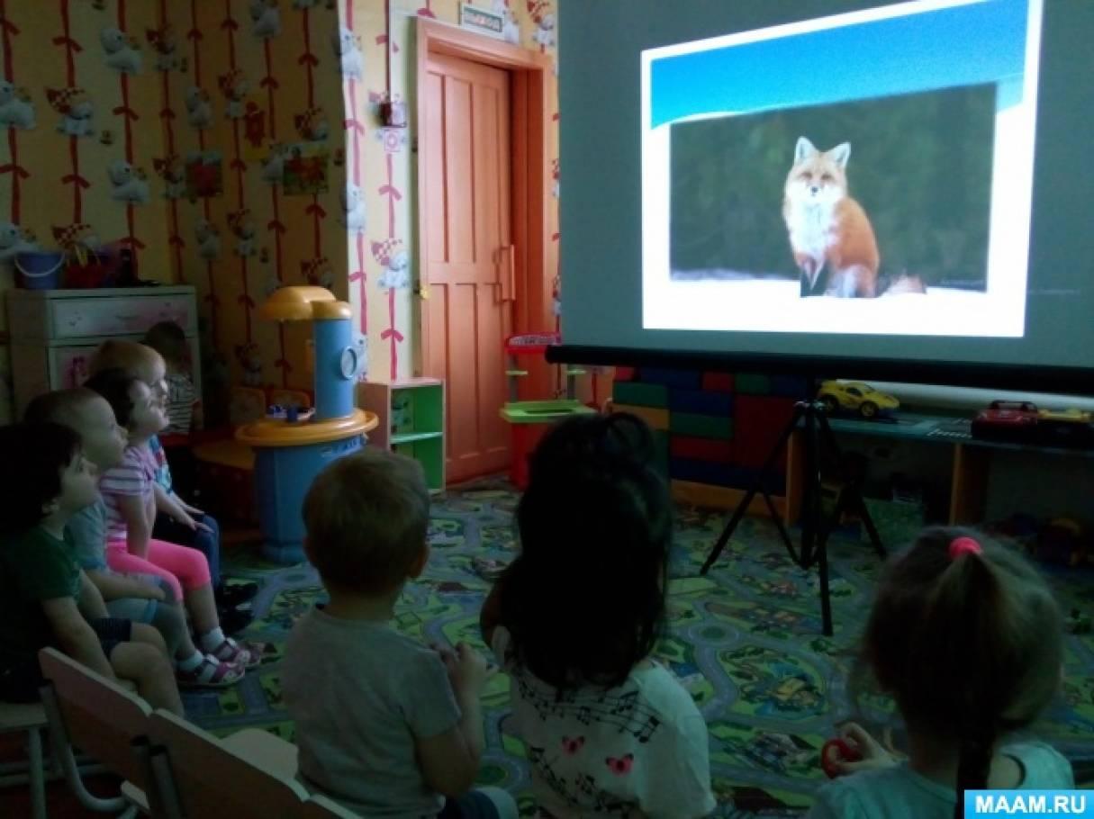 Занятие для детей младшей группы «Зимующие животные Красноярского края»