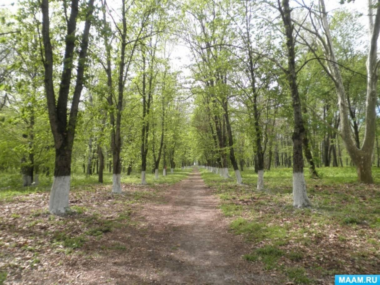 Ученический проект «Исследование состояния парка ГПЗ «Гулькевичский» на территории Гулькевичского городского поселения»