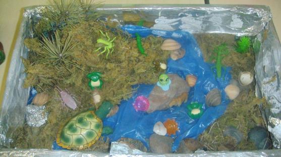 Макеты природных зон для детского сада своими руками