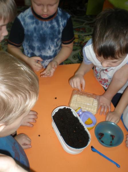 Экологическое воспитание дошкольников. <b>Конспект</b> ...