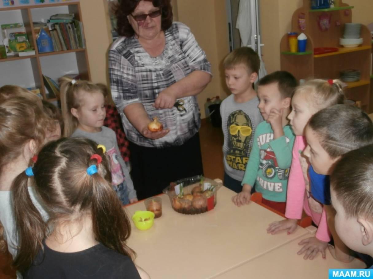 Опытническая деятельность с детьми подготовительной группы «Витамины на подоконнике»