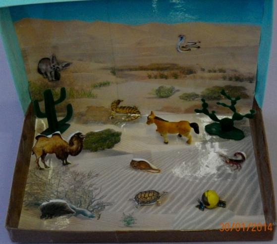 Макеты для уголка природы в детском саду своими руками 34