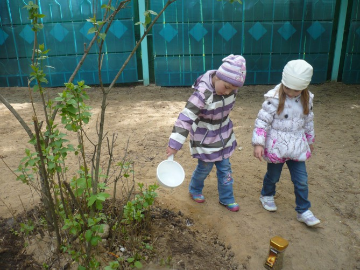 экологический проект знакомство с природой