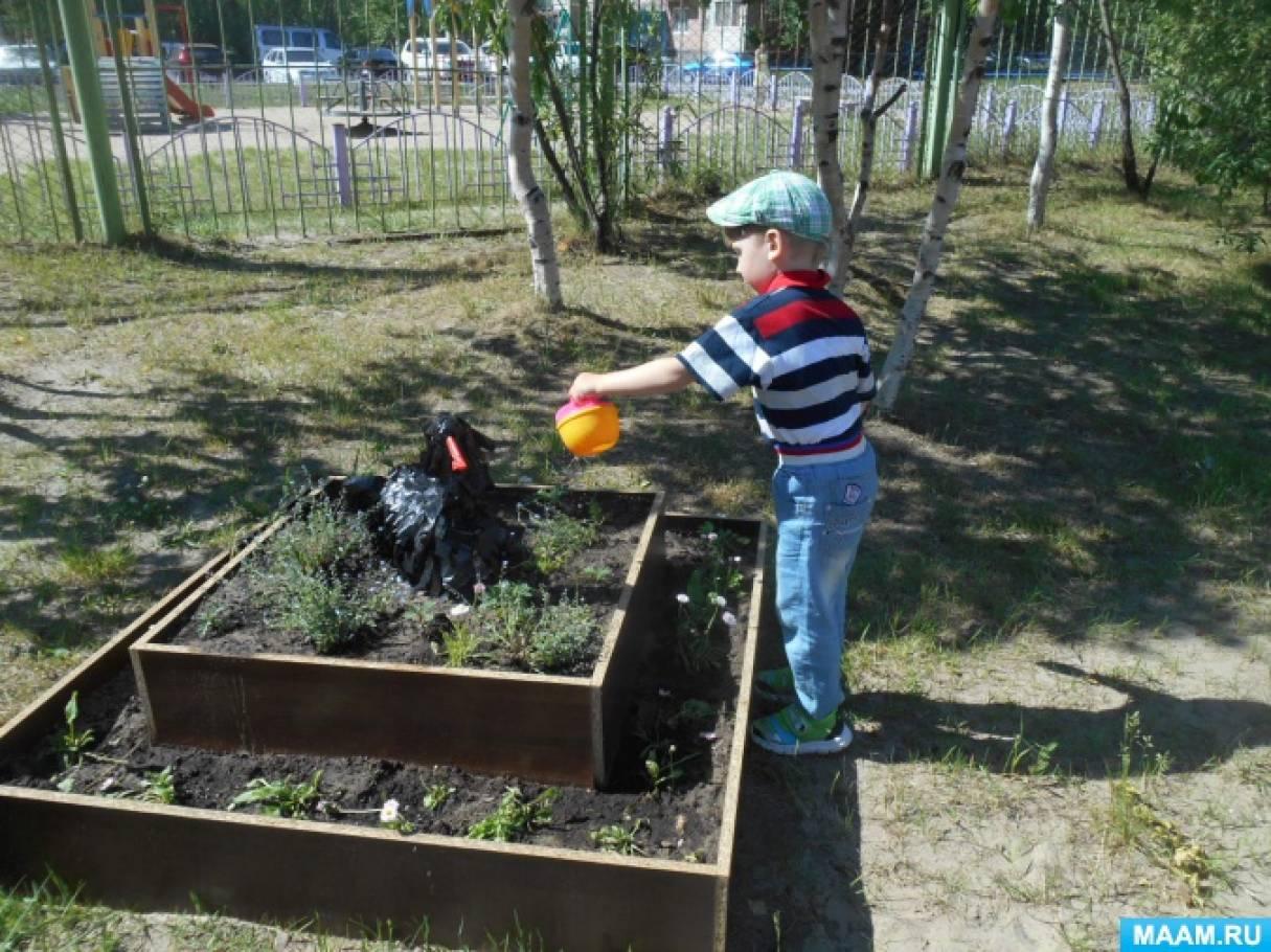 Клумба на территории детского сада. Мини-проект. Воспитателям ...