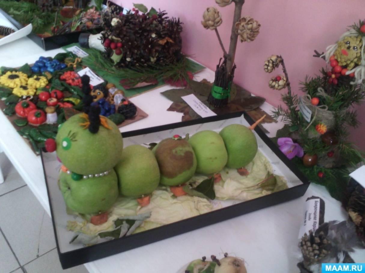 Методическая разработка «Воспитательно-образовательные возможности «Огорода на окне» в детском саду»