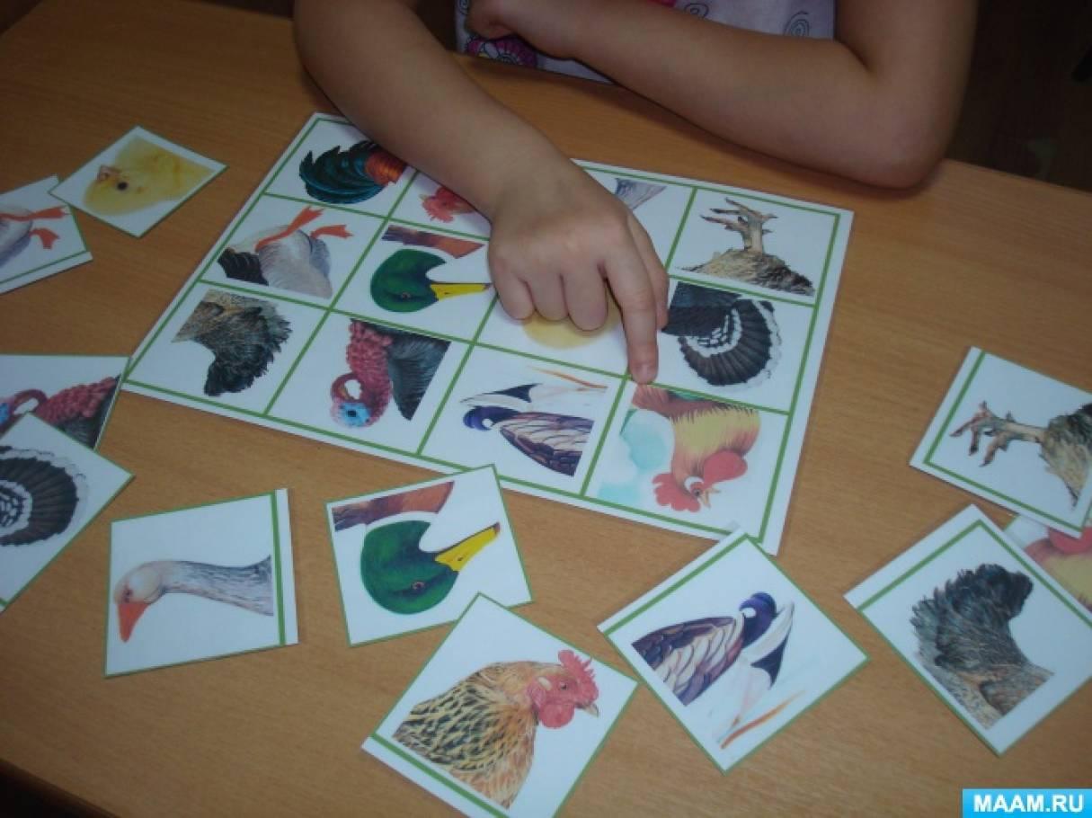 Игра-лото на образование и употребление притяжательных прилагательных «Птичий двор»