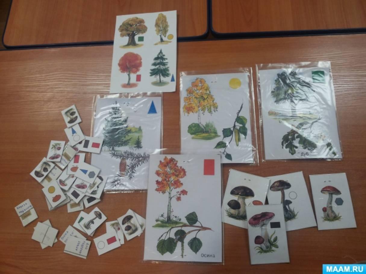Дидактическая авторская игра для детей старшего дошкольного возраста «Собери грибочки»