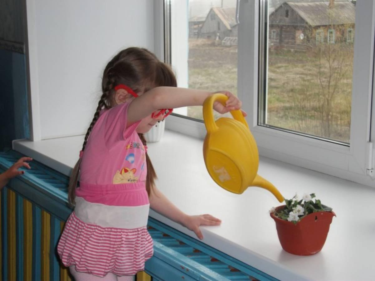 Анализ работы по экологическому воспитанию в детском саду