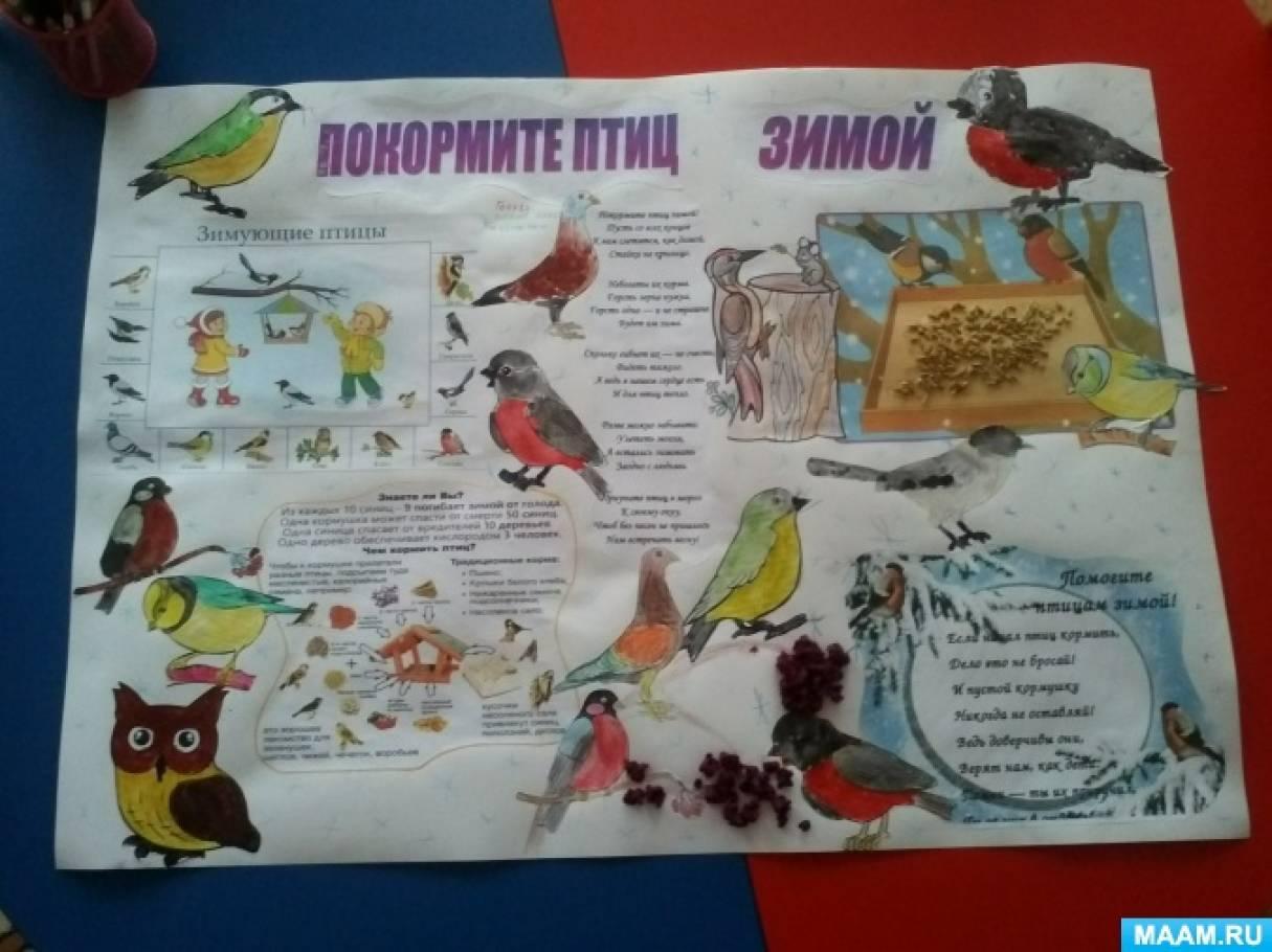 Коллективная стенгазета старшей группы «Покормите птиц зимой!»